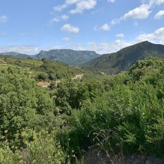 Idée séjour express : une excursion dans le Gard