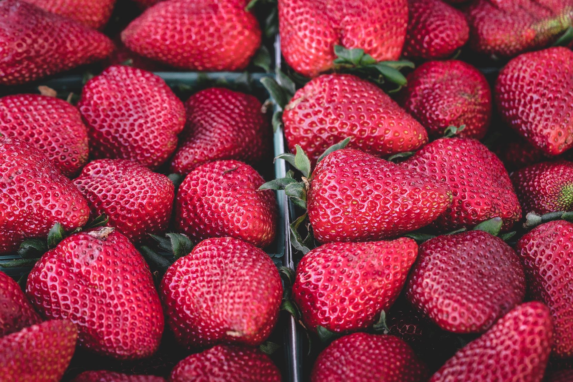 Achetez des produits bio en ligne via des boutiques spécialisées